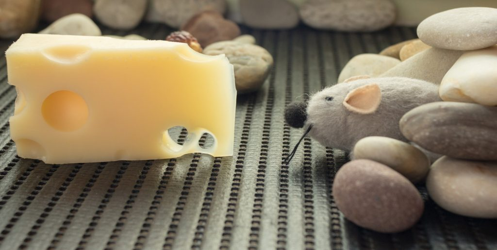 souris-peluche-fromage